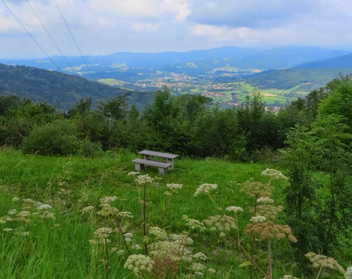 Unser Pleiten- Pech- und Pannenurlaub im Bayrischen Wald (August 2014)