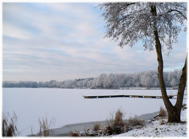 20090110-winter3