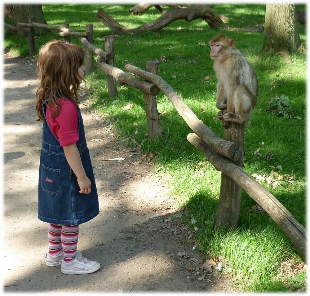 2011-09-zoo-5
