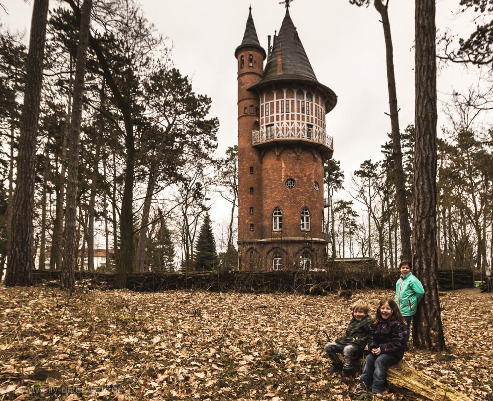2016-Mecklenburg-Vorpommern-Elefantenhof-Berlin-Rerik (183)