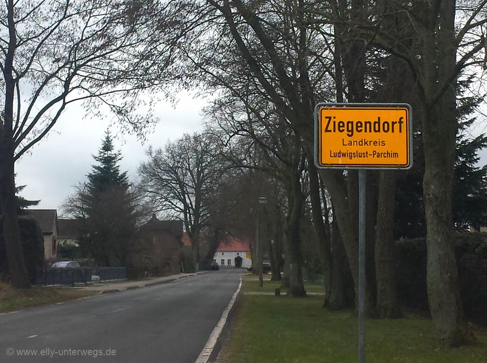 2016-Mecklenburg-Vorpommern-Elefantenhof-Berlin-Rerik (2)