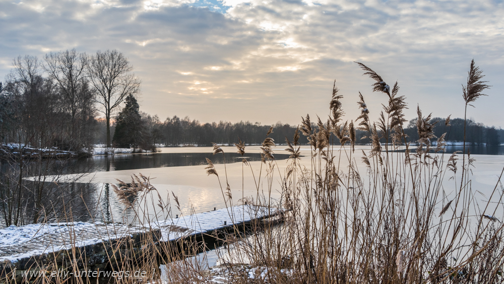 Winter-Muensterland (1 von 1)