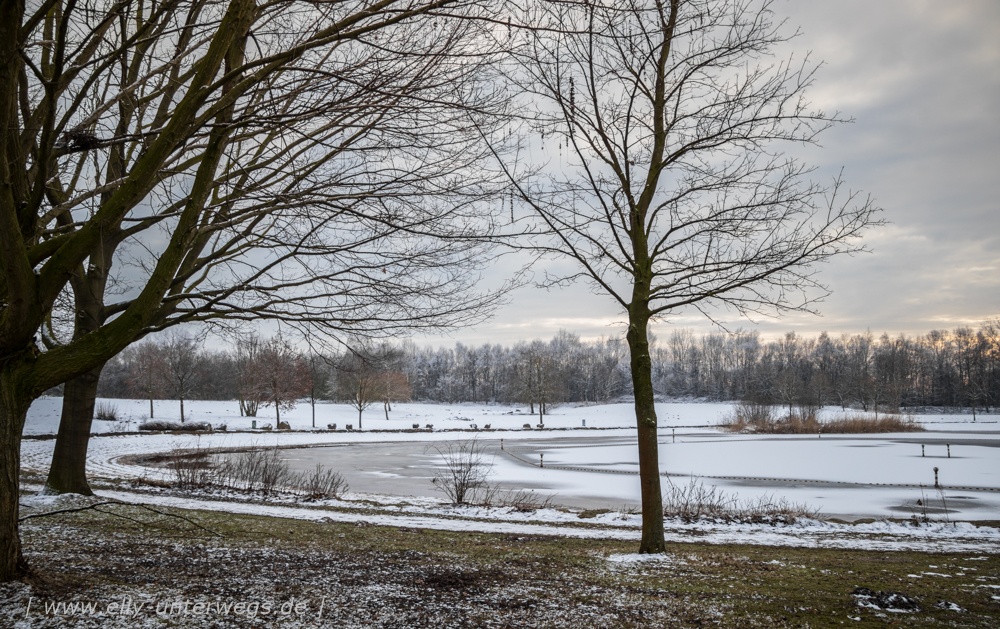 Winter-Muensterland (2 von 1)