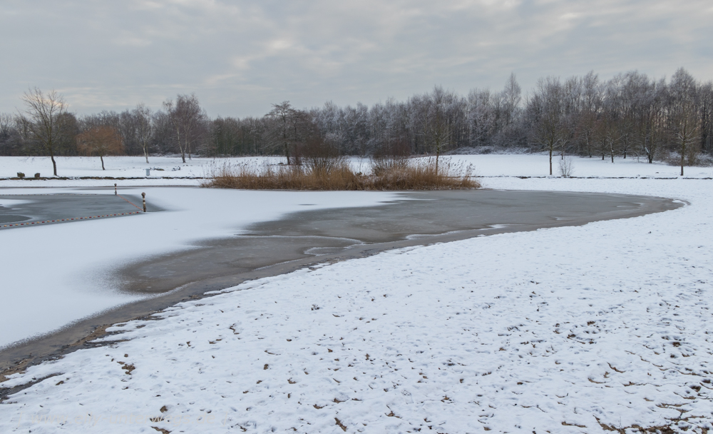 Winter-Muensterland (3 von 1)