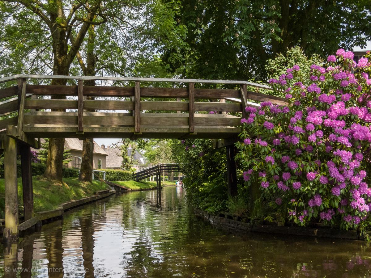 2016-05-Niederlande-Giethoorn-Tagesausflug-mit-Kinder (9)