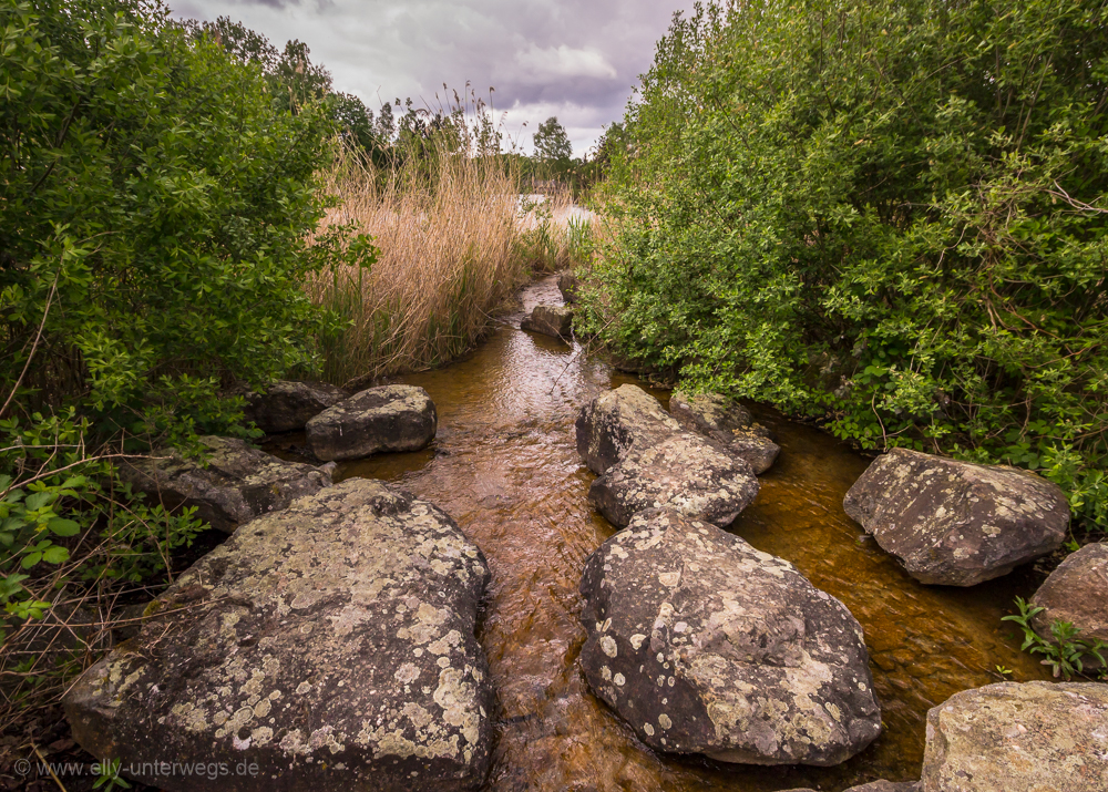 2016-05-Pfingsten-Torfmoorsee-Hoerstel-Bevergern-Tecklenburger-Land (9 von 18)