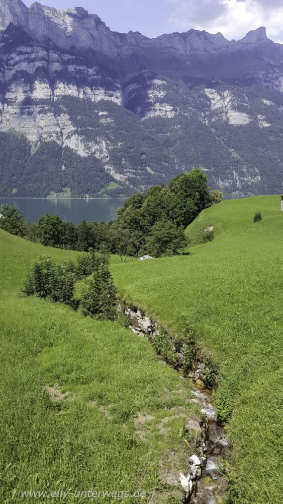 schweiz-heidiland-walensee-20160816_14325920160816_143259-3