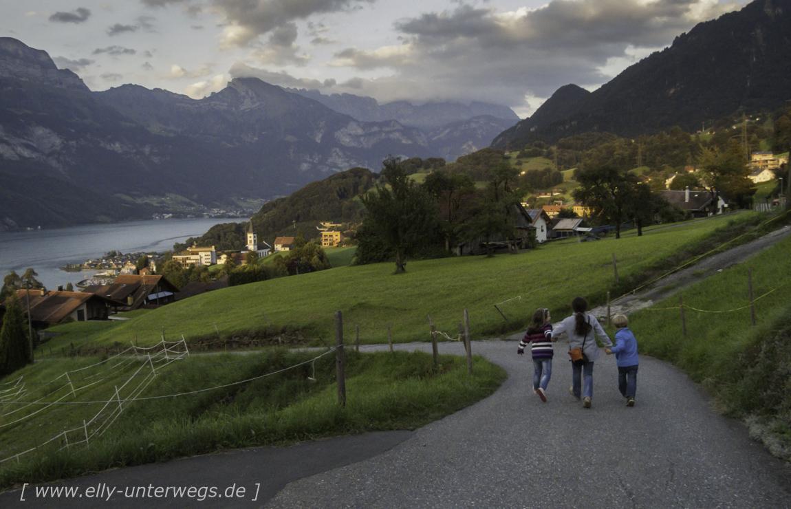 schweiz-heidiland-walensee-img_0633img_0633-3