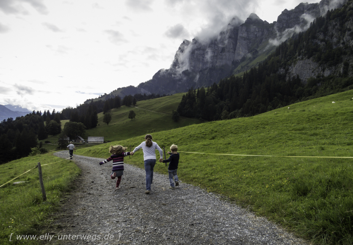schweiz-heidiland-walensee-img_0727img_0727-3