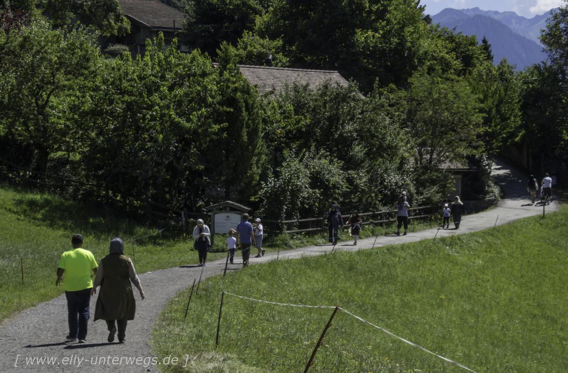 schweiz-heidiland-walensee-img_0885img_0885-3