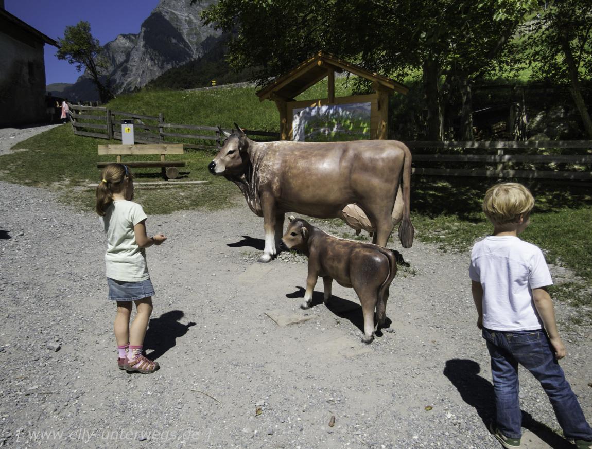 schweiz-heidiland-walensee-img_0922img_0922-3