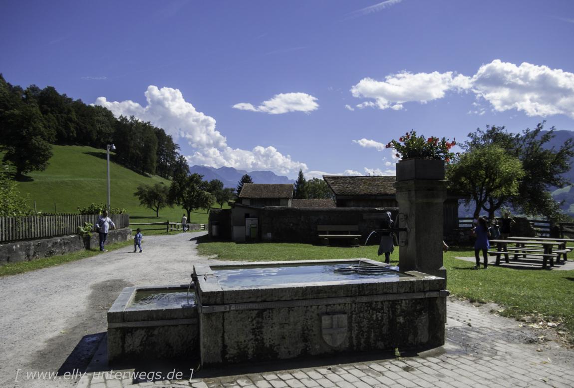 schweiz-heidiland-walensee-img_0996img_0996-3