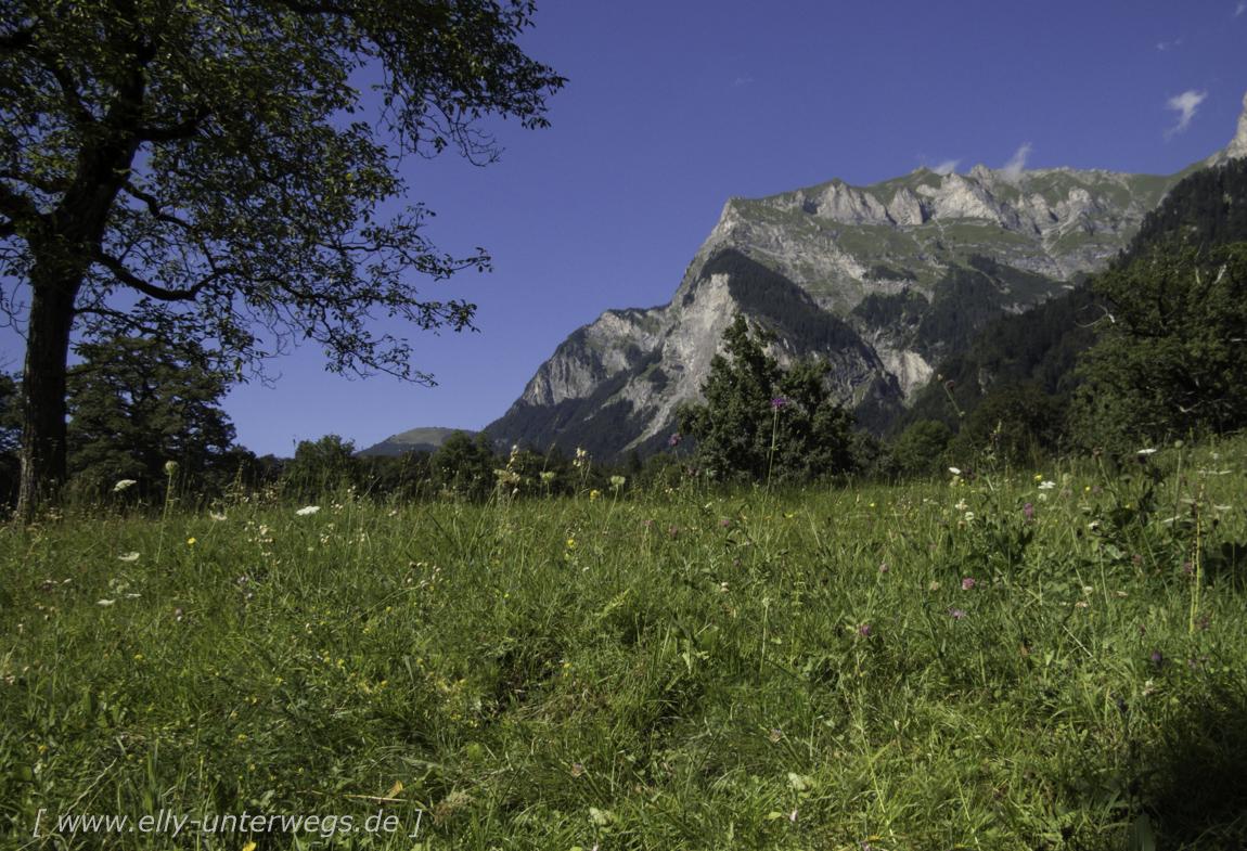 schweiz-heidiland-walensee-img_1044img_1044-3