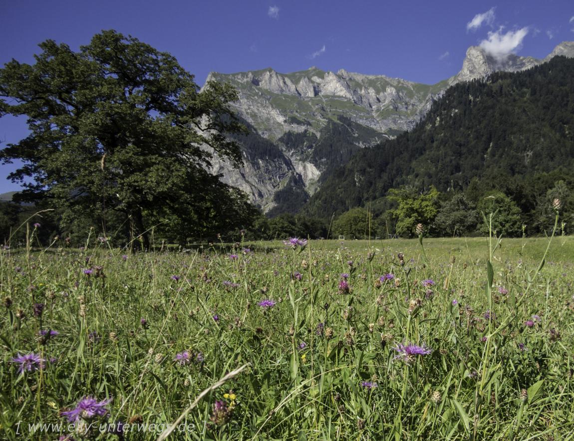 schweiz-heidiland-walensee-img_1049img_1049-3