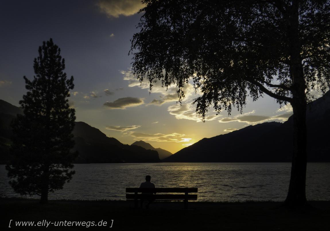 schweiz-heidiland-walensee-img_1216img_1216-3