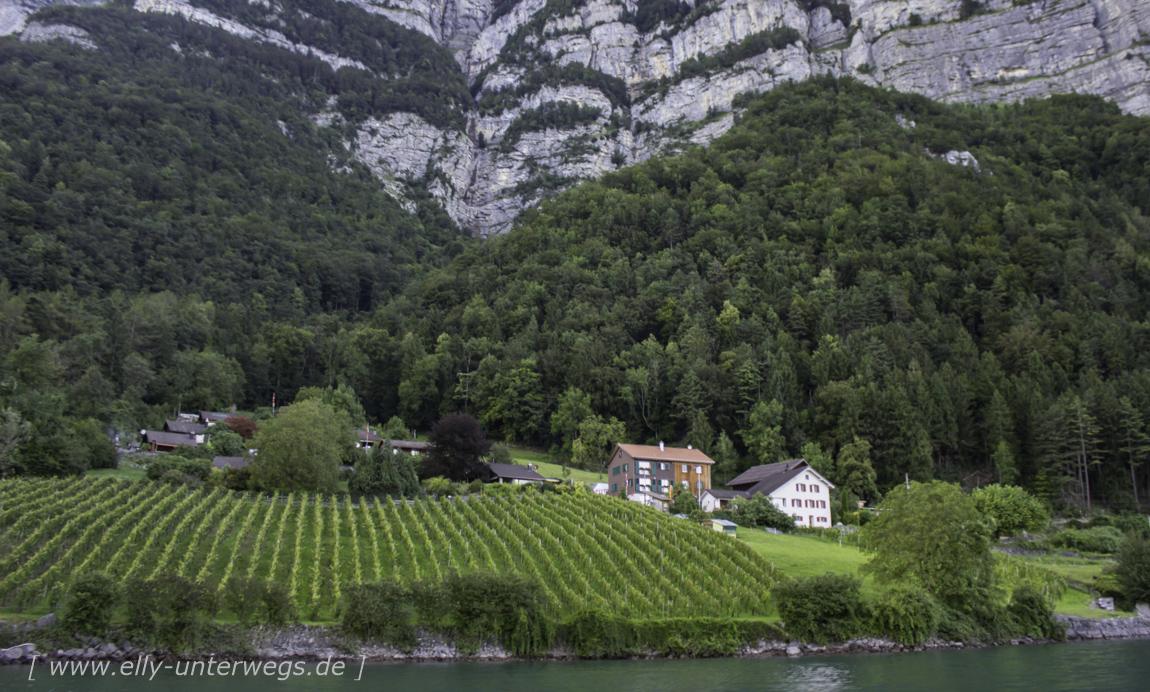 schweiz-heidiland-walensee-img_4001img_4001-3