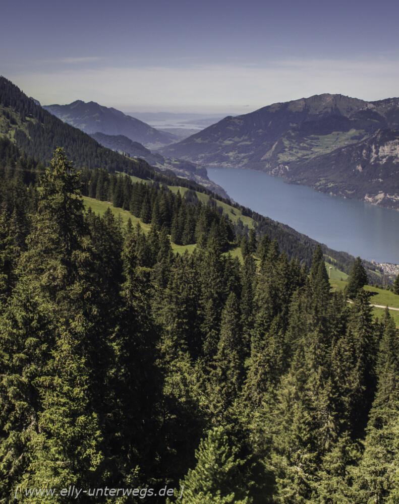 schweiz-heidiland-walensee-_mg_3908_mg_3908-3