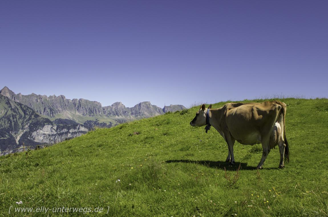 schweiz-heidiland-walensee-_mg_3925_mg_3925-3