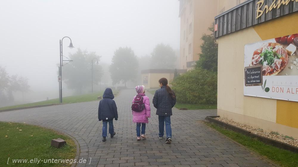 urlaub-erzgebirge-oberwiesenthal-seiffen-dresden-1-175