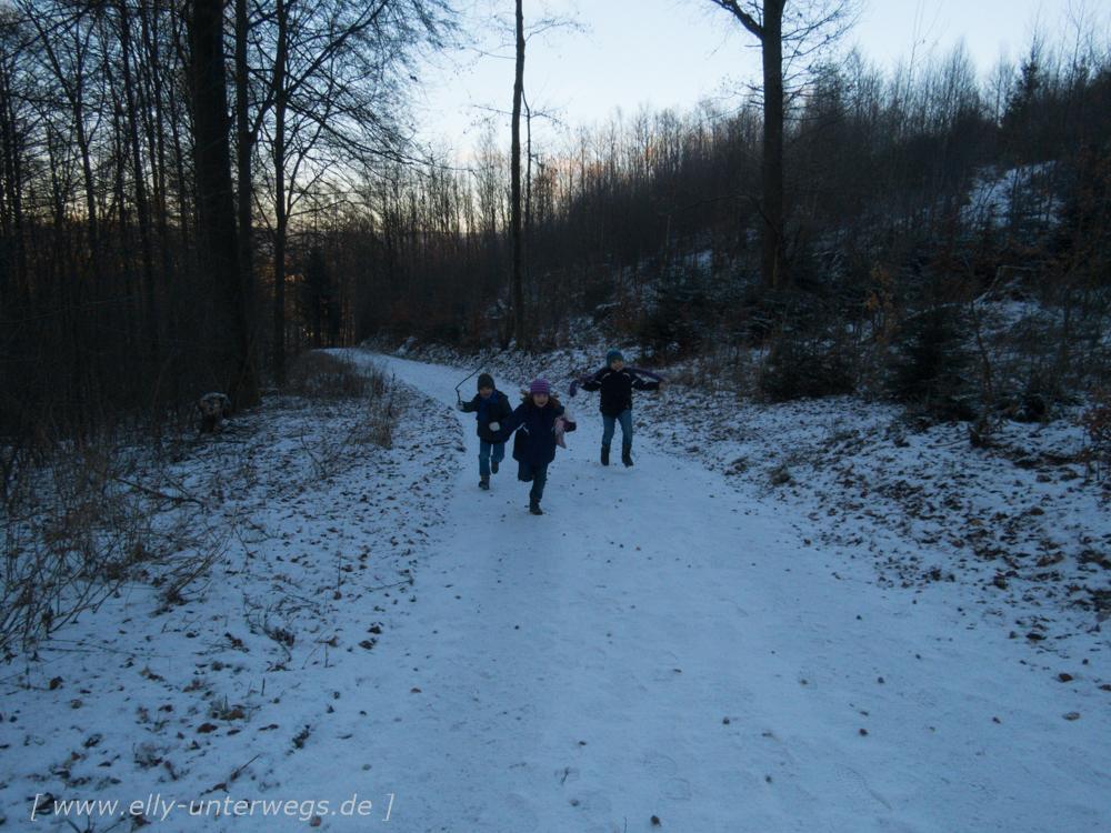 sauerland-winterberg-meschede-winterurlaub-sauerland-winterberg-meschede-winterurlaub-img_3446