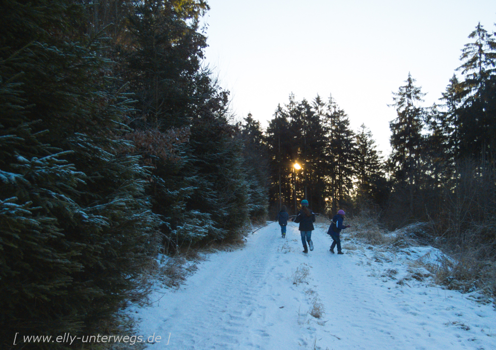 sauerland-winterberg-meschede-winterurlaub-sauerland-winterberg-meschede-winterurlaub-img_3457
