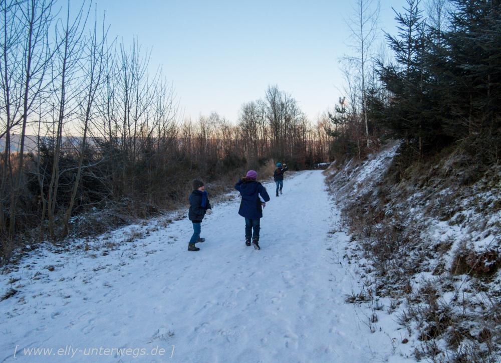 sauerland-winterberg-meschede-winterurlaub-sauerland-winterberg-meschede-winterurlaub-img_3491