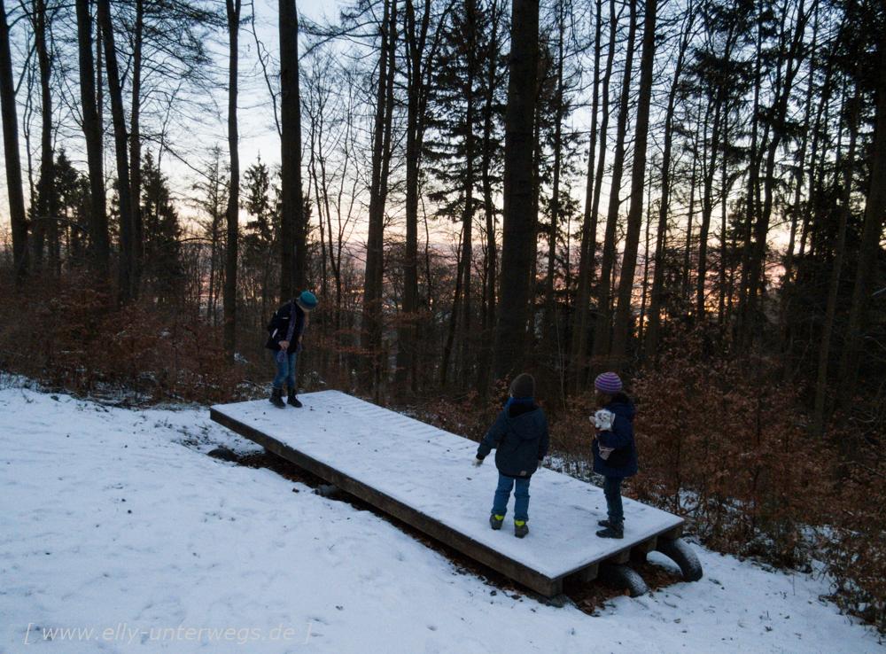 sauerland-winterberg-meschede-winterurlaub-sauerland-winterberg-meschede-winterurlaub-img_3540