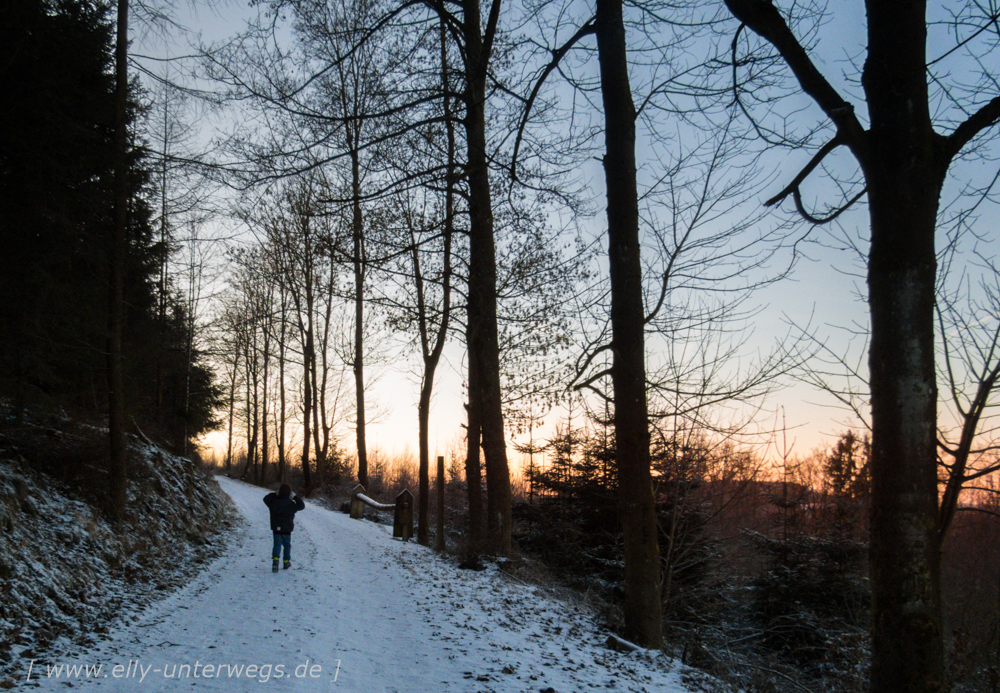 sauerland-winterberg-meschede-winterurlaub-sauerland-winterberg-meschede-winterurlaub-img_3556