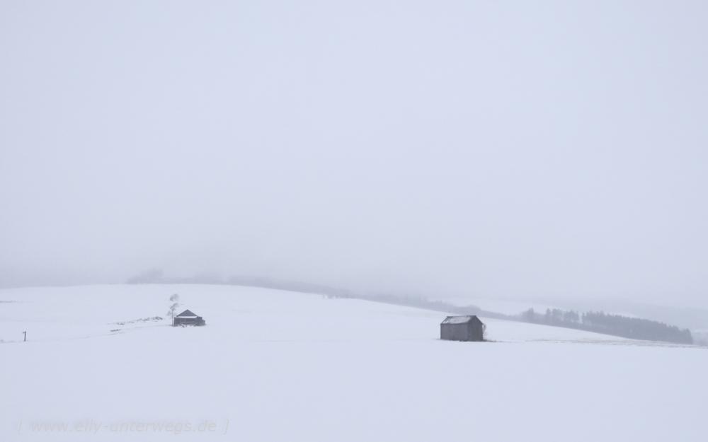 sauerland-winterberg-meschede-winterurlaub-sauerland-winterberg-meschede-winterurlaub-img_3789