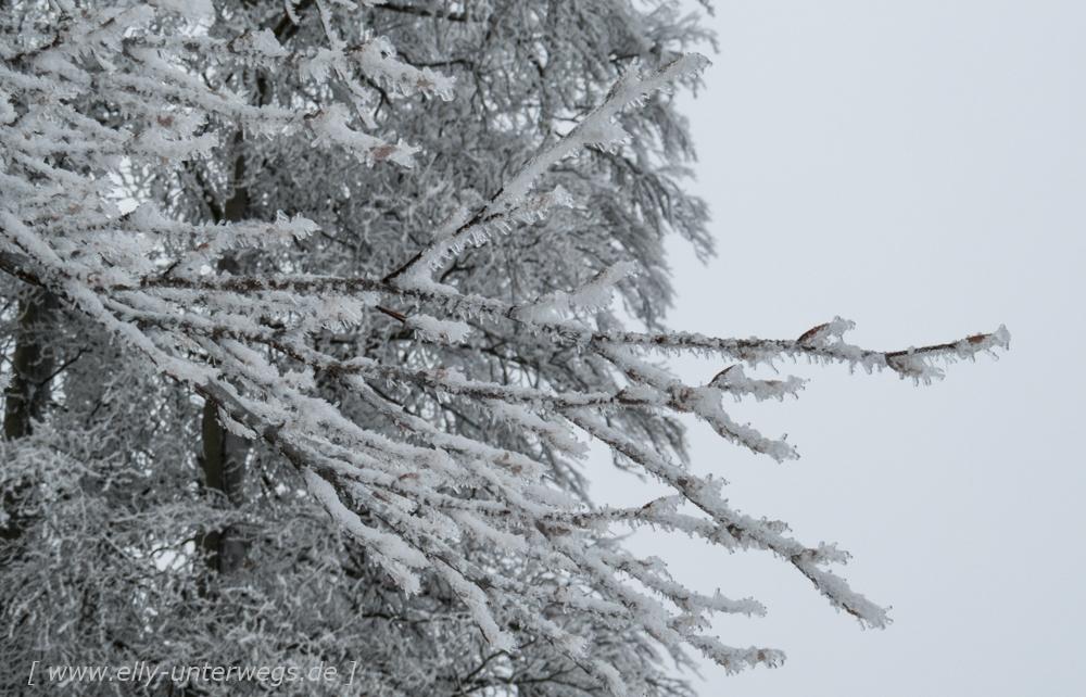 sauerland-winterberg-meschede-winterurlaub-sauerland-winterberg-meschede-winterurlaub-img_3895