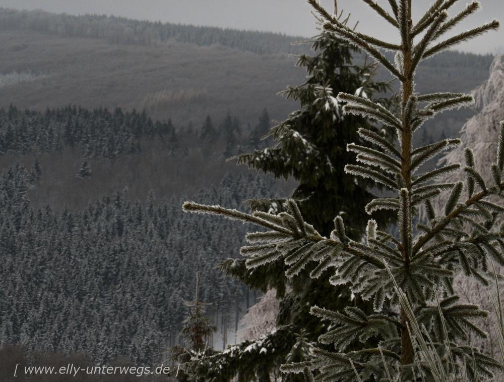 sauerland-winterberg-meschede-winterurlaub-sauerland-winterberg-meschede-winterurlaub-img_3916