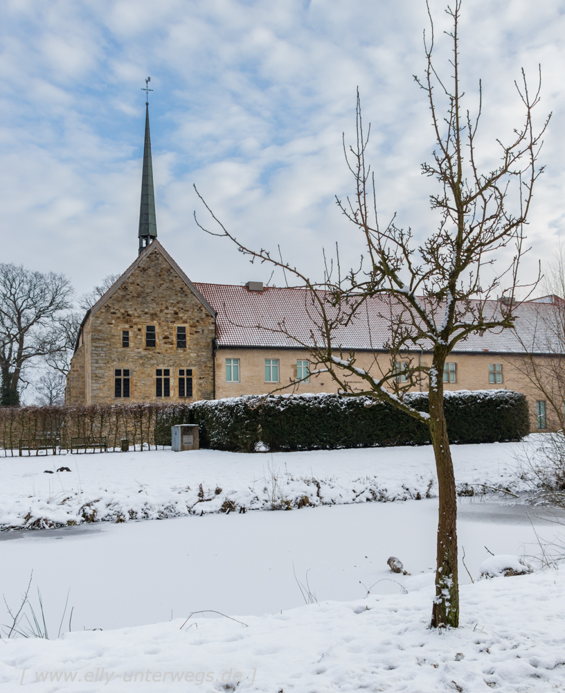 Winter-Muensterland (16 von 25)
