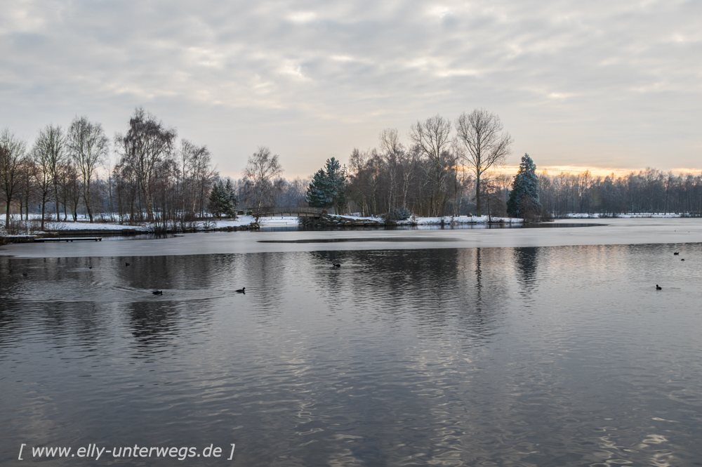 Winter-Muensterland (22 von 25)