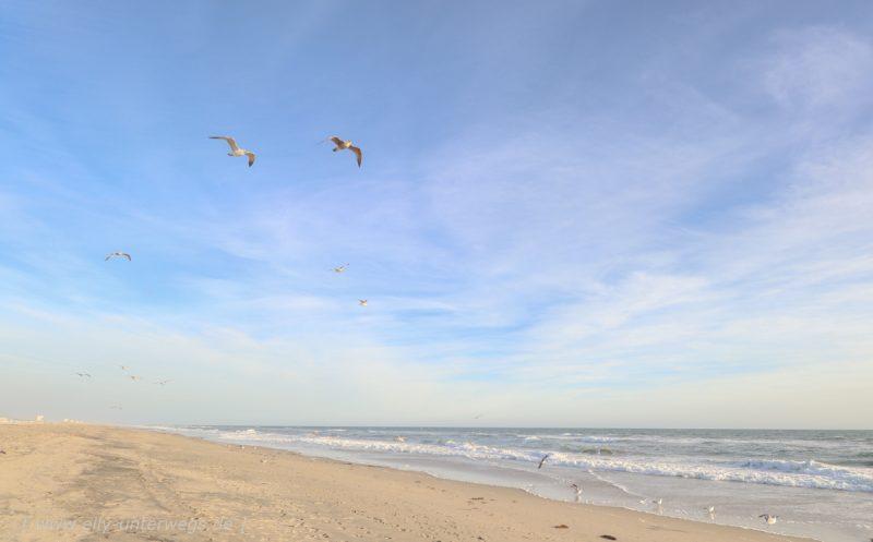 Unser 2. Tag in Huntington Beach – und der letzte ganze Tag in Amerika …..