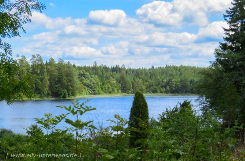 Einkaufen in Schweden, Pooltime und täglich grüsst der Elch …. oder auch nicht?