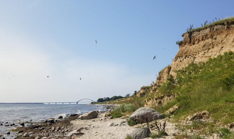 Fehmarn – Die familienfreundliche Insel in der Ostsee